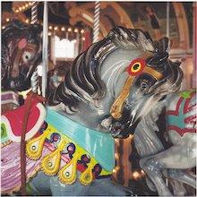John Woolf, Gray Horse, Color Photograph