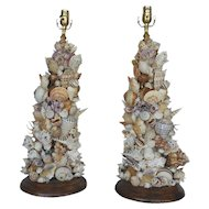 Pair of Shell Table Lamps