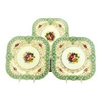 Set of 12 Royal Worcester Square Botanical Dessert Plates with Green