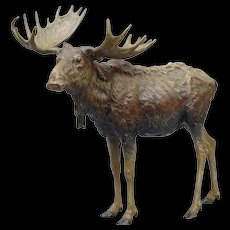 Very large cold painted Vienna bronze Moose by Franz Bergman ca1880