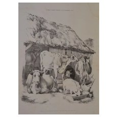 'English Farmyard Scenes' 20th Century