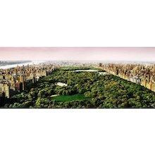 David Drebin - Dreams of Central Park
