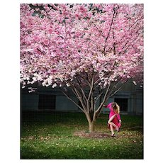 David Drebin - Pink Moment