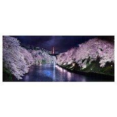 David Drebin - Pink Nights