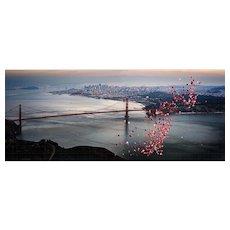 Drebin - Balloons over San Francisco