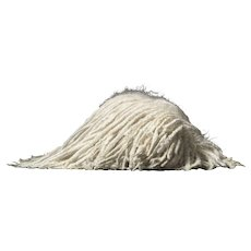 Tim Flach - Sleeping Mop