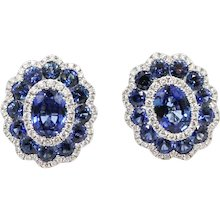 18K White Gold Gregg Ruth Sapphire Earrings