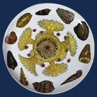 Piero Fornasetti Conchiglie Marine Life Plate, #4.