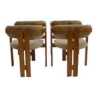 Tobia Scarpa Pigreco Mid Century Modern Set of 4 Armchairs 1957 italy