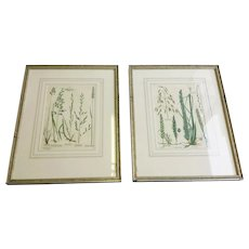 Floral Etchings (Set of Six)