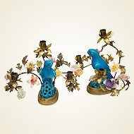 Pair of French Porcelain Flower and Chinese Parrot Candelabra