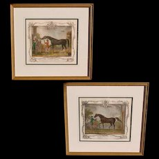 """Pair of 18th Century Racehorse Handcolored Engravings: """"White Nose"""" and """"Babraham"""""""