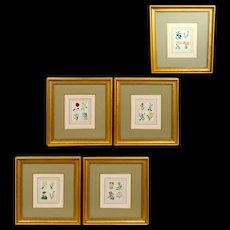 Set of Five 19th Century English Botanical Prints, Benjamin Maund