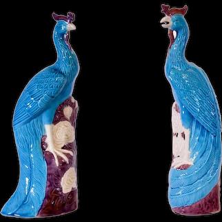 Pair of Turquoise and Manganese Glazed Chinese Porcelain Ho-Ho Birds or Phoenixes