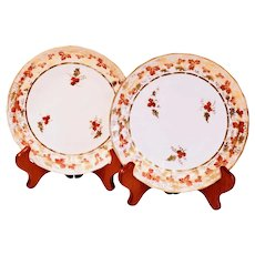 Pair of English Derby Grape Vine Pattern Porcelain Plates, ca. 1810