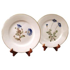Pair of Early English Derby Blue Flower Porcelain Plates