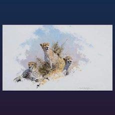 "David Shepherd - ""Cheetah II"""