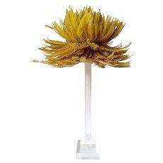 Yellow Gold Juju Hat Sculpture