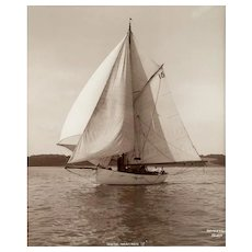 Early silver gelatin photographic print by Beken of Cowes - Yacht White Heather