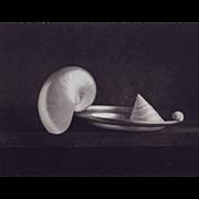 D W Mellor, Three Shells, 1996