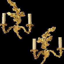 "LOUIS XV Style gilded bronze ""OAK LEAVES & ACORN"" Motif two light sconce"