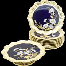 Aynsley Aesthetic Movement Cobalt Blue & Gold Daisy Dessert Set 11 Pieces