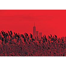 "NYC ""Red Passion"", On The Road, 2017 (Masterpiece)"