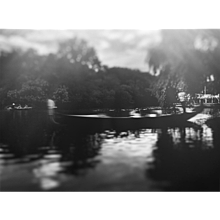 Venice, Central Park 2015