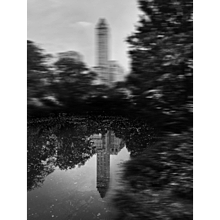 Reflection, Central Park, 2015, NYC