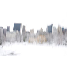 Snow In Central Park, 2013 - NYC