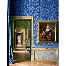 Robert Polidori - In the Foreground the Portrait of F.-M. de Bourbon, Chateau de Versailles, 1984