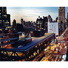 David Drebin - New York City