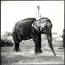 Kate Moss Nepal