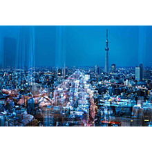 David Drebin - Tokyo Reflections