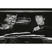 Albert Watson - Mick Jagger with Lepard in Car
