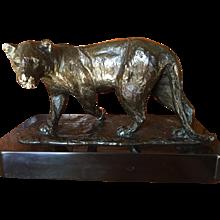 """""""La Lionne"""" Bronze By Roger Godchaux 1878"""
