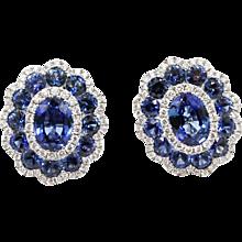 18K White Gold Gregg Ruth Sapphire Earrings