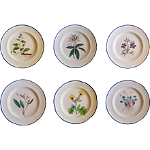 English Botanical Specimen Pearlware Set of Six Pottery Plates, Possibly Davenport