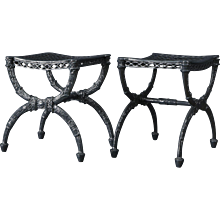 Pair of Charles X Cast Iron Curule Form Stools