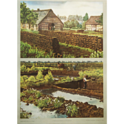 "Vintage German School Chart, Poster ""peat extraction"""