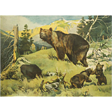 "Antique German School Wall Chart ""Bears"""