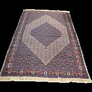 Senna Carpet