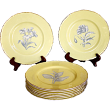 Set of 18 Royal Worcester Yellow Botanical Dessert Plates