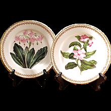 Pair of 19th Century English Botanical Porcelain Plates